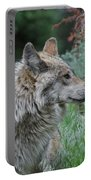 Grey Wolf Profile 2 Portable Battery Charger