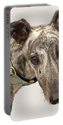 Greyhound 2 Portable Battery Charger