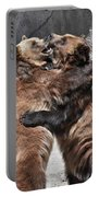 Grizzlies' Playtime 2 Portable Battery Charger