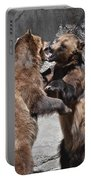 Grizzlies' Playtime 3 Portable Battery Charger