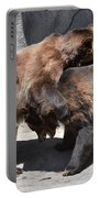 Grizzlies' Playtime 4 Portable Battery Charger