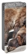 Grizzlies' Playtime 5 Portable Battery Charger
