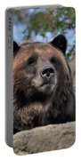 Grizzly Bear 1 Portable Battery Charger