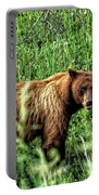 Grizzly Bear 2 Portable Battery Charger