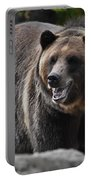 Grizzly Bear 3 Portable Battery Charger