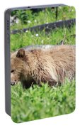 Grizzly Bear Cub In Yellowstone National Park Portable Battery Charger