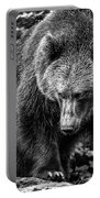 Grizzly Bear In Black And White Portable Battery Charger