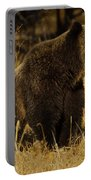 Grizzly Bear-signed-#6672 Portable Battery Charger