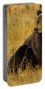 Grizzly Bear-signed-#6721 Portable Battery Charger