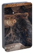 Grizzly Bear Under The Cabin Portable Battery Charger