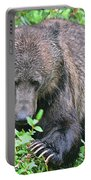 Grizzly Claws Portable Battery Charger