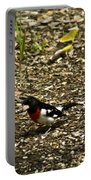 Grosbeak With Quizzical Look Portable Battery Charger