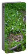Groundhog Home Defense 2017 28 Portable Battery Charger
