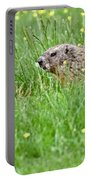 Groundhog In A Field Of Flowers Portable Battery Charger