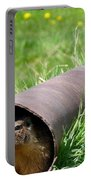 Groundhog In A Pipe Portable Battery Charger