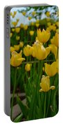 Grouping Of Yellow Tulips Portable Battery Charger