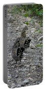 Grouse Pair Portable Battery Charger