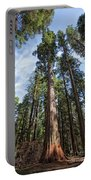 Grove Of Big Trees Portable Battery Charger