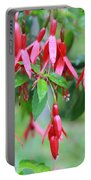 Growing In Red And Purple Portable Battery Charger