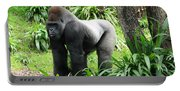 Grumpy Gorilla IIi Portable Battery Charger