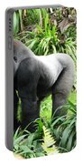 Grumpy Gorilla IIi Portable Battery Charger