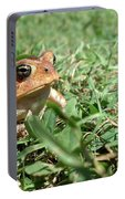 Grumpy Toad Portable Battery Charger