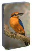 Guam Kingfisher Todiramphus Cinnamominus Portable Battery Charger