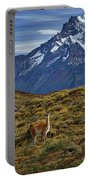 Guanacos In Patagonia Portable Battery Charger