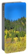 Guanella Pass Study 1 Portable Battery Charger