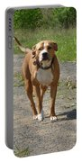 Guarding Pit Bull Dog Portable Battery Charger