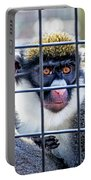 Guenon Monkey Portable Battery Charger