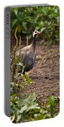 Guineafowl 2 Portable Battery Charger