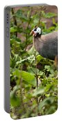 Guineafowl 3 Portable Battery Charger