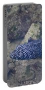 Guineafowl Pufferfish Portable Battery Charger