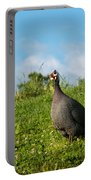 Guineafowl Searching Portable Battery Charger