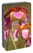 Gulf Purple Pitcher Plant Portable Battery Charger