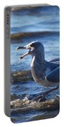Gull Fighting Portable Battery Charger