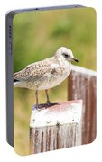 Gull On A Post Portable Battery Charger