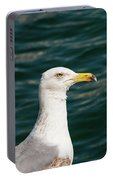Gull Profile Portable Battery Charger