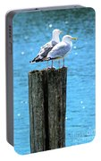 Gulls On Piling Portable Battery Charger
