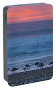 Gulls With Pink Sky Portable Battery Charger