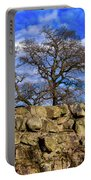 Hadrians Tree Portable Battery Charger