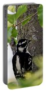 Downy Woodpecker 01 Portable Battery Charger