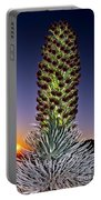 Haleakala National Park Silversword Sunrise Maui Hawaii Portable Battery Charger