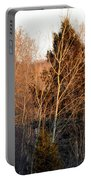 Halfway Up Sunset Rays Portable Battery Charger