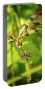 Halloween Pennant Dragonfly Portable Battery Charger