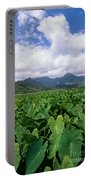 Hanalei Valley Taro Field Portable Battery Charger