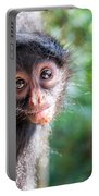 Hanging Spider Monkey Portable Battery Charger