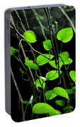 Hanging Vines Portable Battery Charger