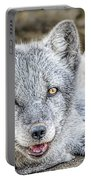Happy Arctic Fox Portable Battery Charger